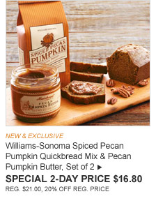NEW & EXCLUSIVE -- Williams-Sonoma Spiced Pecan Pumpkin Quickbread Mix & Pecan Pumpkin Butter, Set of 2 -- SPECIAL 2-DAY PRICE $16.80 (REG. $21.00, 20% OFF REG. PRICE)