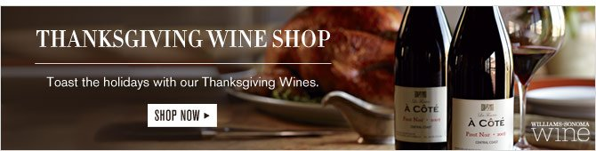 THANKSGIVING WINE SHOP -- Toast the holidays with our Thanksgiving Wines. -- SHOP NOW