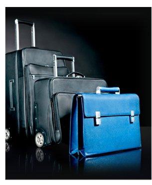 Porsche Design Luggage 1