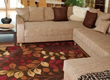 Nourison Rugs & Pillows