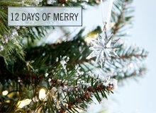 The 12 Days of Merry Ornaments by Lenox & More