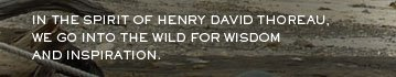 In the spirit of henry david thoreau we go into the wild for wisdome and inspiration