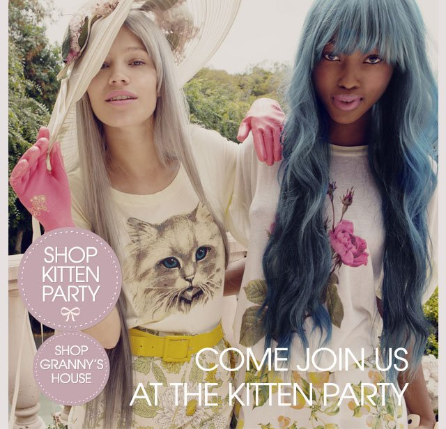 Join Us For The Kitten Party