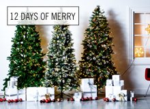 The 12 Days of Merry All Things Trees & Wreaths