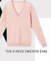 » THE V NECK SWEATER