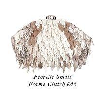 Fiorelli Small Frame Clutch