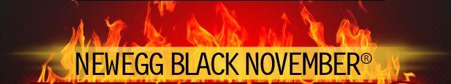 NEWEGG BLACK-NOVEMBER
