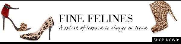 Fine Felines