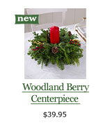 Woodland Berry Centerpiece, $39.95
