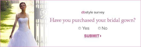 dbstyle survey