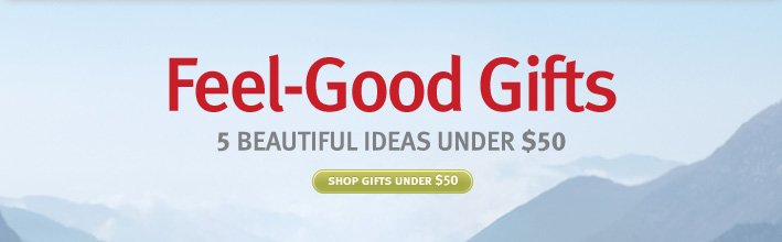 feel good gifts. shop gifts under $50