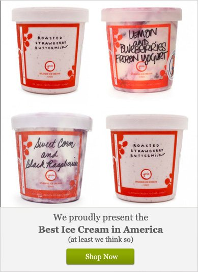 We Proudly Present the Best Ice Cream in America - Shop Now