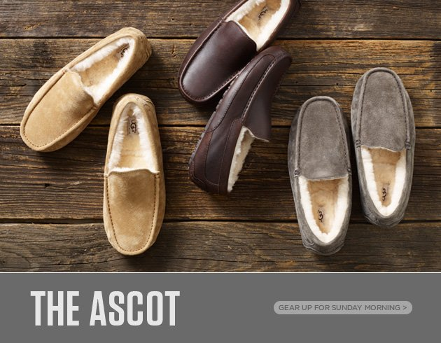 The Ascot - Gear up for Sunday Morning
