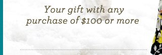 Your gift with any purchase of $100 or more
