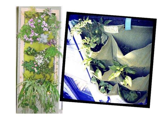 Grow Vertical Urban Garden from Alicia Silverstone