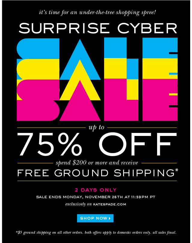 surprise cyber sale. shop now.