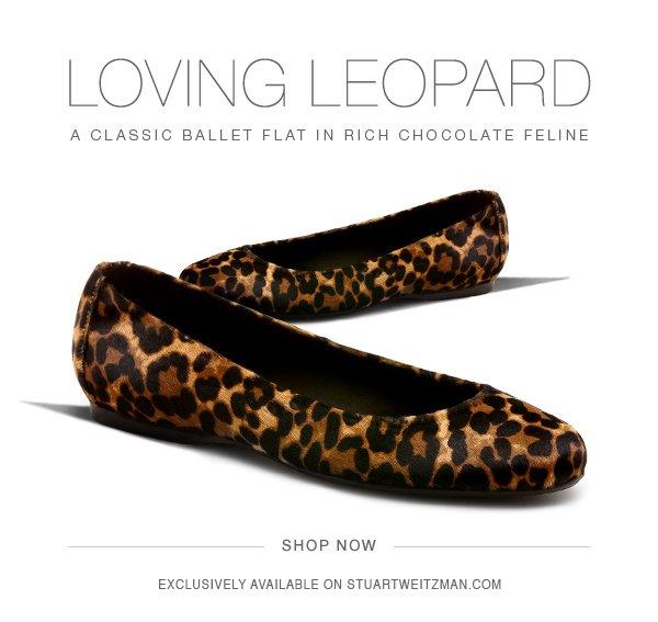 Loving Leopard