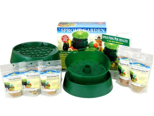 Basic Sprout Growing Kit from Brendan Brazier