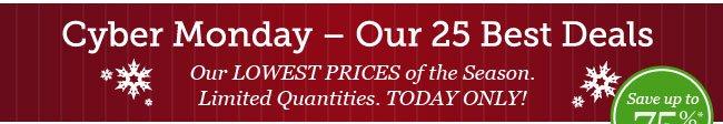 Cyber Monday - Our 25 Best Deals
