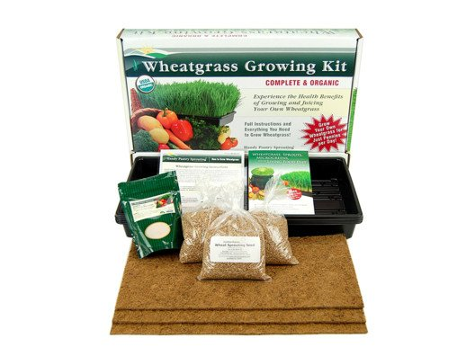 I love these organic growing kits! They make the whole process so easy.
