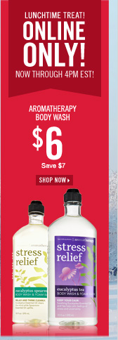 $6 Aromatherapy Body Wash