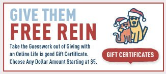 Buy a Gift Certificate for The Holidays