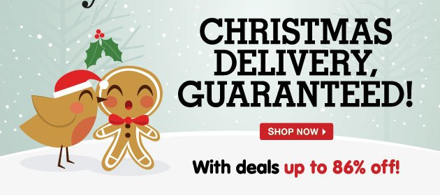 Christmas Delivery, Guaranteed! With deals up to 86% off!