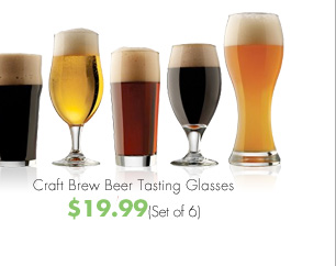 Craft Brew Beer Tasting Glasses $19.99 (Set of 6)