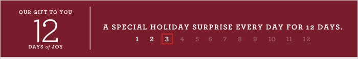 OUR GIFT TO YOU 12 DAYS of JOY | A SPECIAL HOLIDAY SURPRISE EVERY DAY FOR 12 DAYS.