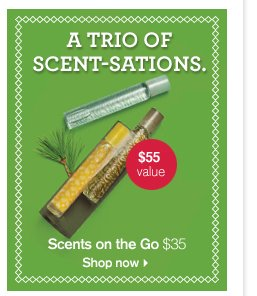 A TRIO SCENT SATIONS Scents on the Go 35 dollars Shop now