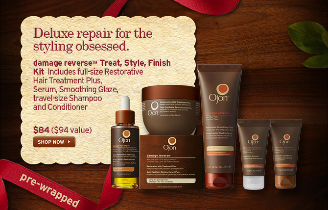 Deluxe repair for the styling obsessed damage reverse treat Style  Finish Kit includes full size restorative Hair treatment Plus Serum  Smoothing Glaze travel size Shampoo and Conditioner 84 dollars a 94  dollars value SHOP NOW