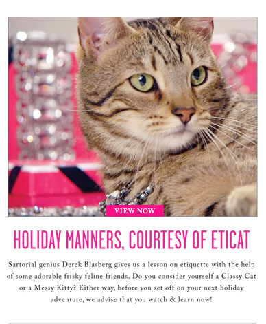 THE PURRFECT GIFT - TAKE HOLIDAY NOTES FROM ETICAT