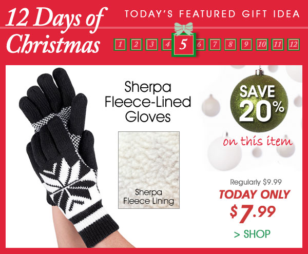 Today Only! Save 20% on Sherpa Fleece-Lined Gloves - Only $7.99