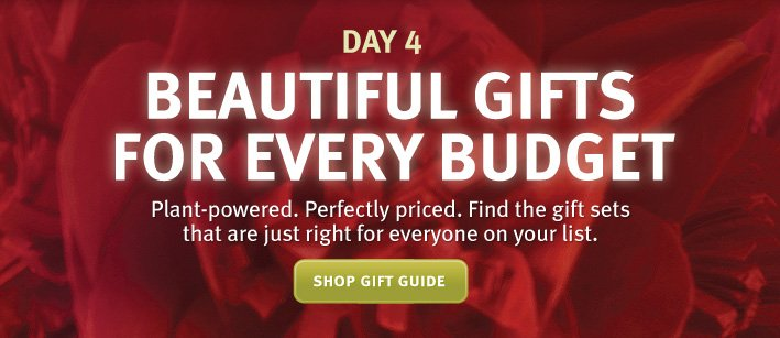 day 4. beautiful gifts for every budget. shop gift guide.