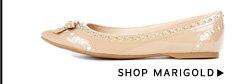 Shop Marigold
