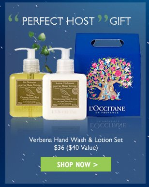 Perfect Guest Gift Verbena Hand Wash & Lotion Set $40 ($36 Value)
