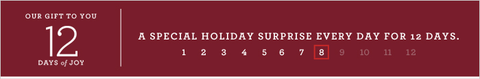 OUR GIFT TO YOU 12 DAYS of JOY   A SPECIAL HOLIDAY SURPRISE EVERY DAY FOR 12 DAYS.
