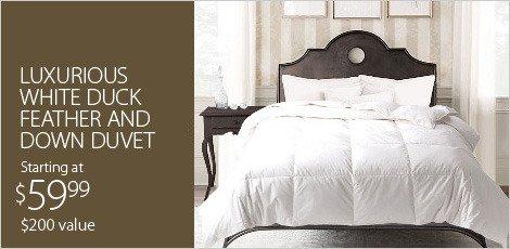 Luxury Bedding: 1500TC & More