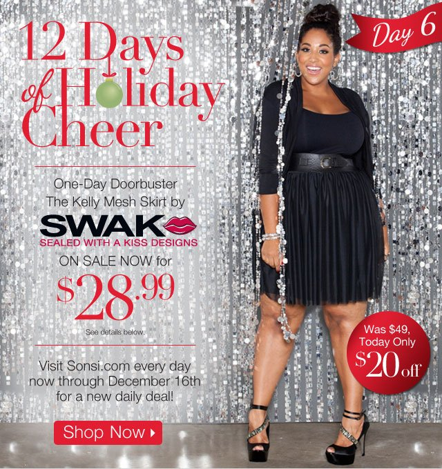 One Day Doorbuster: The Kelly Mesh Skirt by SWAK Designs- On Sale now for $28.99