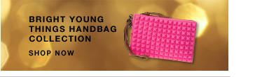 Click here to shop Bright Young Things Handbag Collection