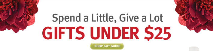 spend a little .give a lot. gifts under $25. shop gift guide.