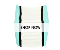 Colorblock Paneled Bodycon Skirt