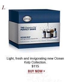 Full Size Kit - Ocean Kelp