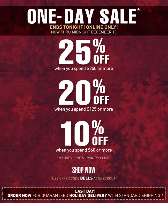 1 day sale! 10% off $60, 20% off $125, 25% off $250