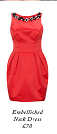 Embellished Neck Dress