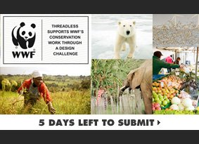 WWF Challenge - 5 days left to submit.