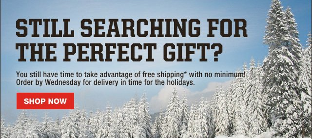 Still Searching for the Perfect Gift?