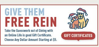 Buy them a Life is good Gift Certificate