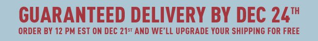 Guaranteed Delivery for The Holiday