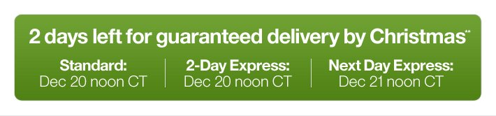 3 days left for guaranteed delivery by  Christmas**